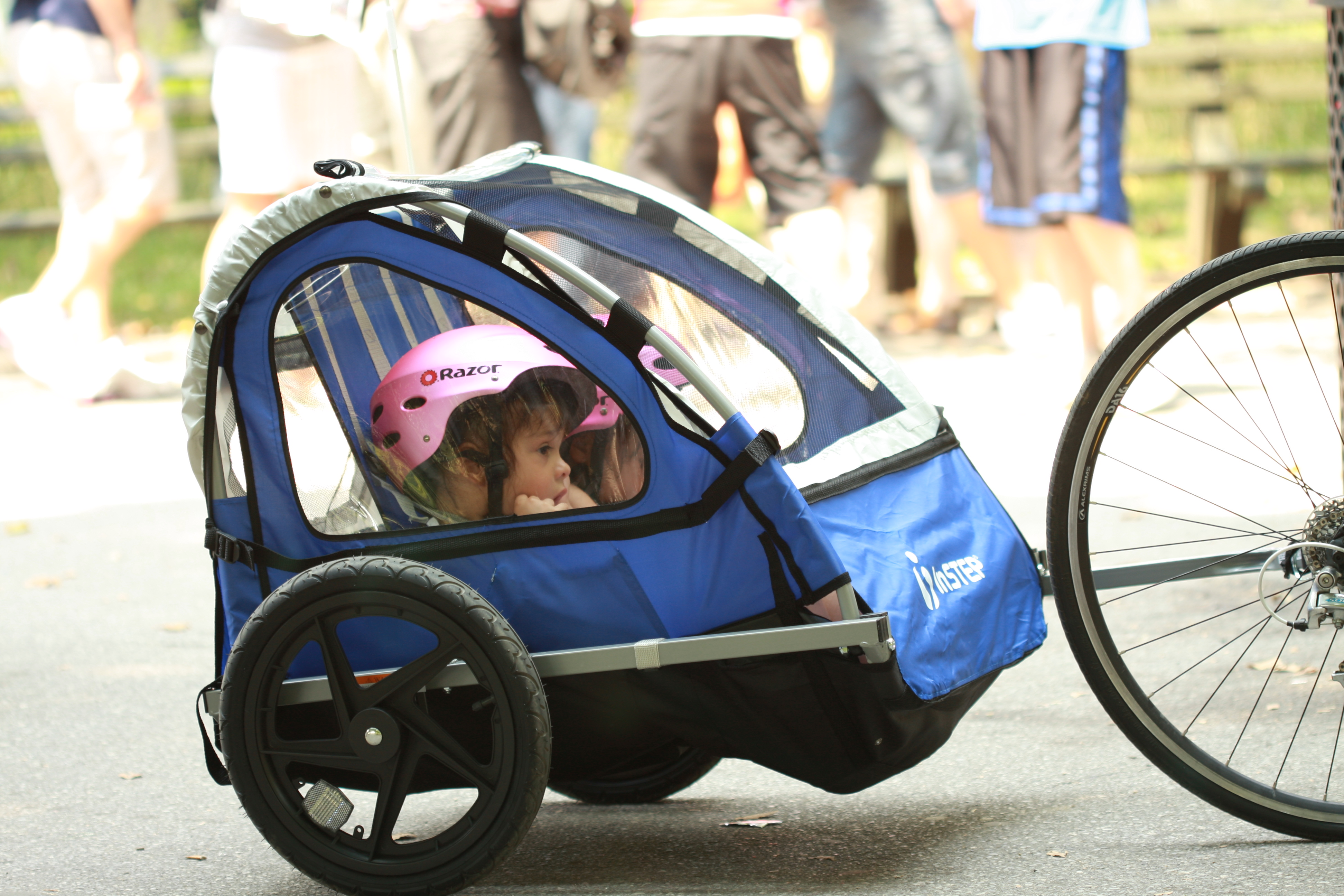 Children in a bike trailer