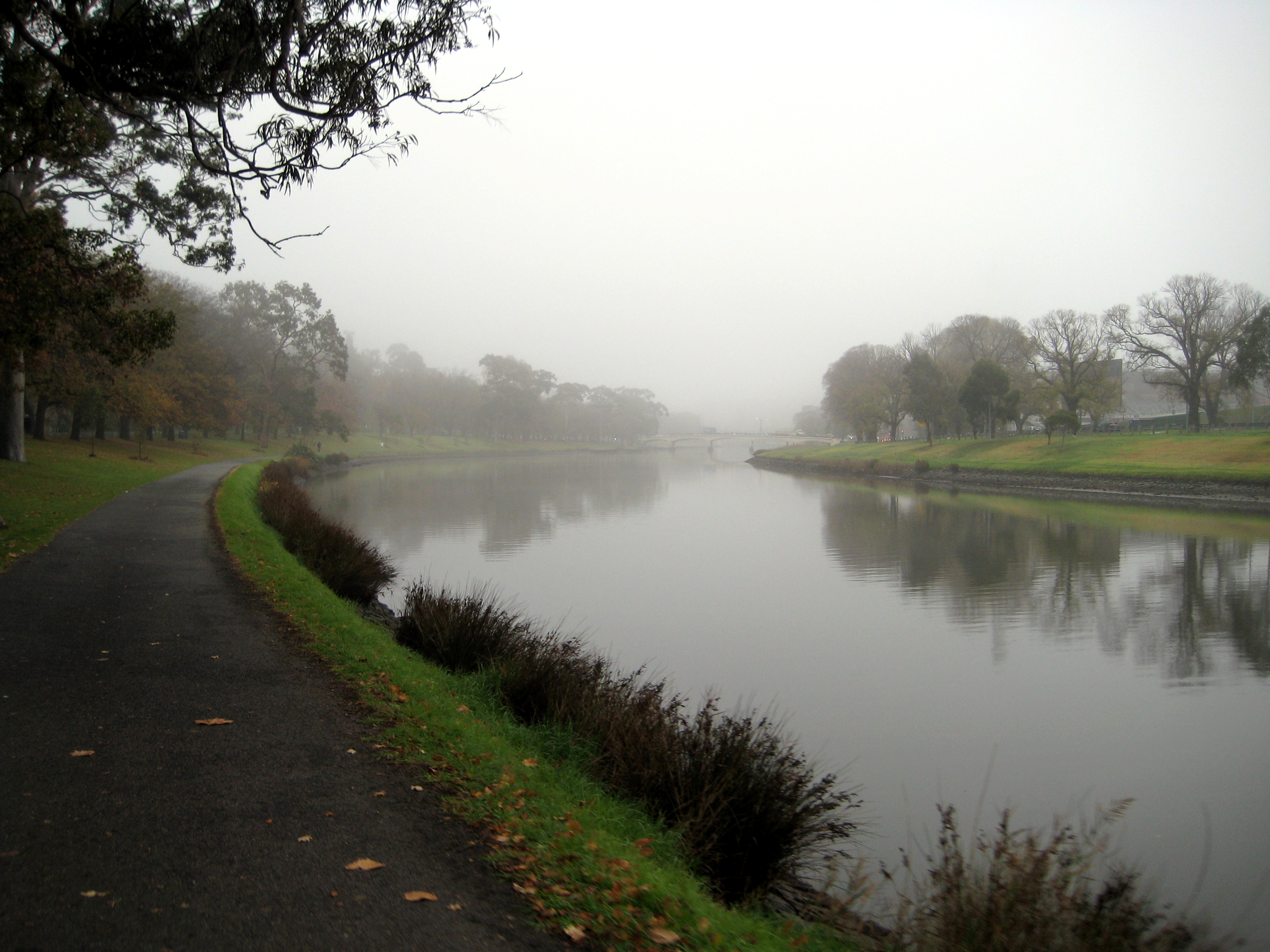 The Yarra River in fog